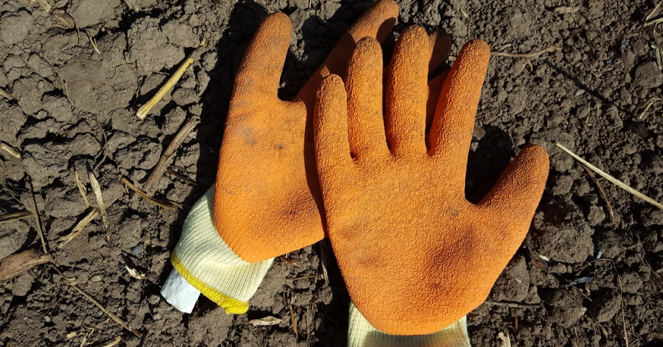 Should have worn the gloves………..